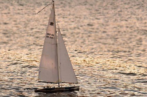 Torpedoed by a Male Charmer-By Edward Maroncha