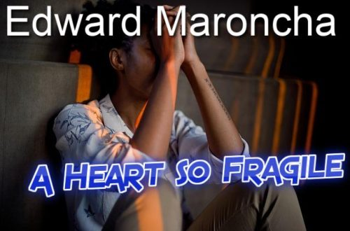 A Heart so Fragile-By Edward Maroncha